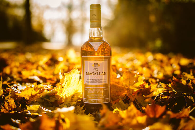 macallan gold whisky in autumn leaves